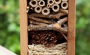 How to create a bug hotel for overwintering beneficial insects in your home garden.