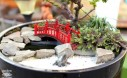 Magical Miniature Gardens (Japanese Garden)