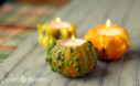 Ornamental Gourds Make Beautiful Fall Candles