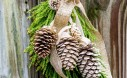 Pine Cone Swag Tutorial