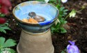 Set Out Water For Bees In Your Garden