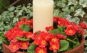 This Easy Candle Planter Is Made With Two Pots Plus Some Annuals And A Candle
