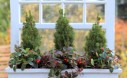 Winter Window Box Planter 1