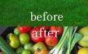 Turn Energy Wasting Lawn Into Nurishing Food Gardens