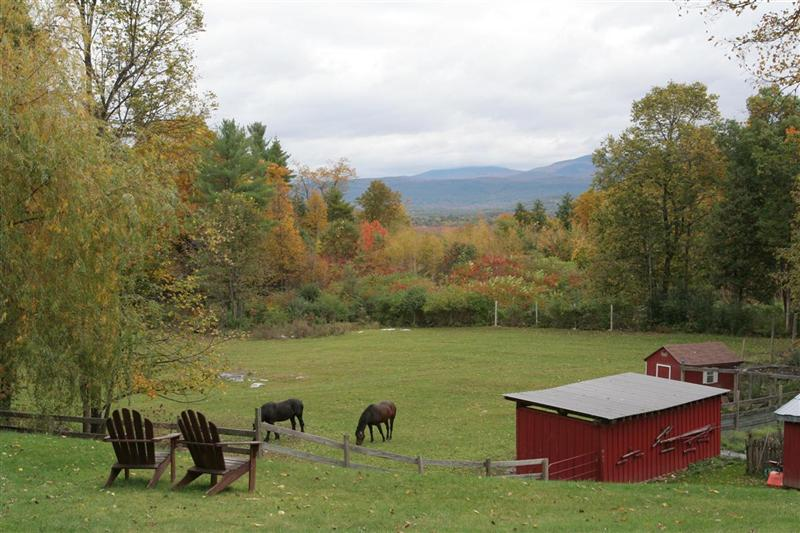 Trevin Farms: view from farmhouse