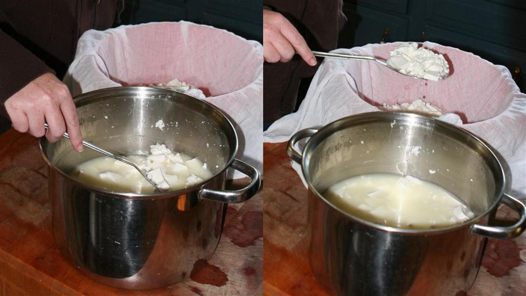 Making chevre in Vermont