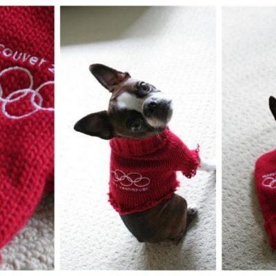 Go Canada Go: Mitten Sweater
