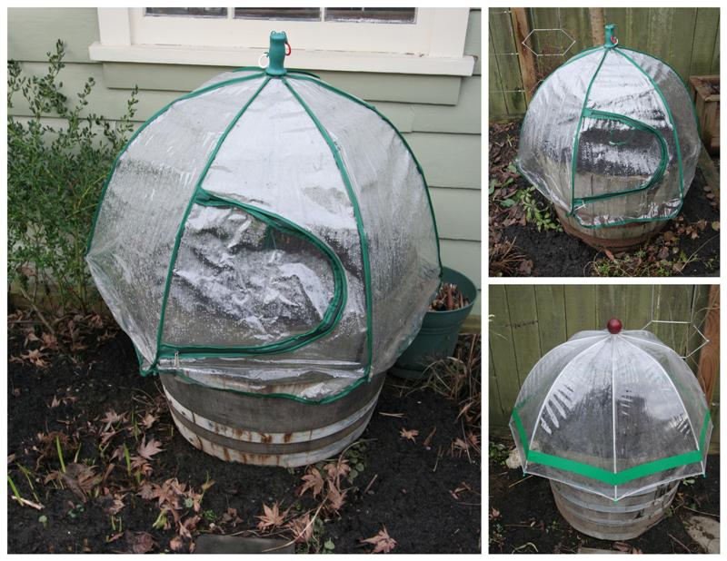 Umbrella Greenhouses Medium