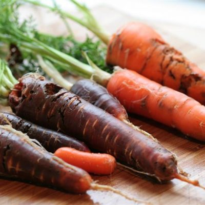 Guide to Growing Carrots