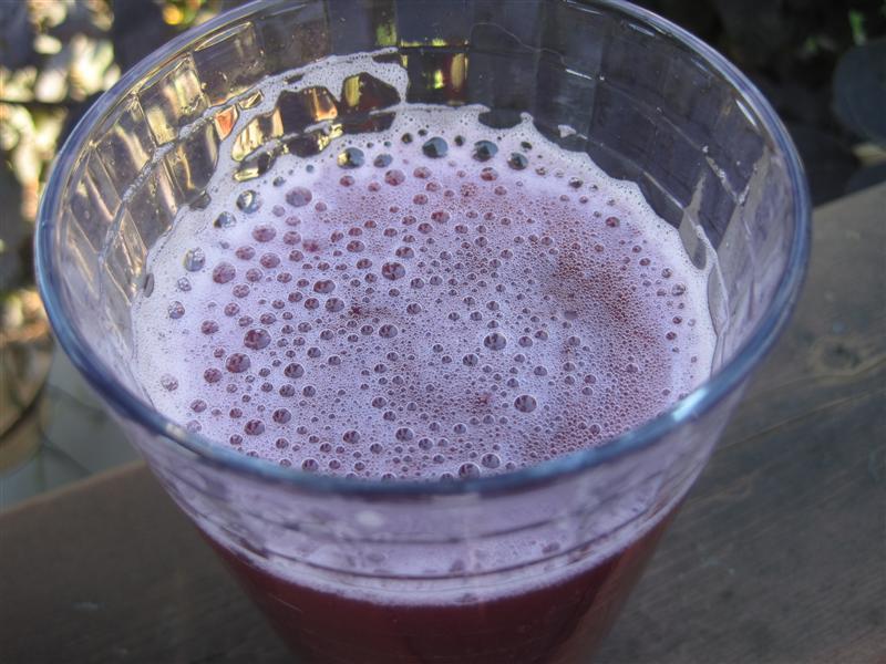 DIY Grape Soda Recipe — Dishmaps