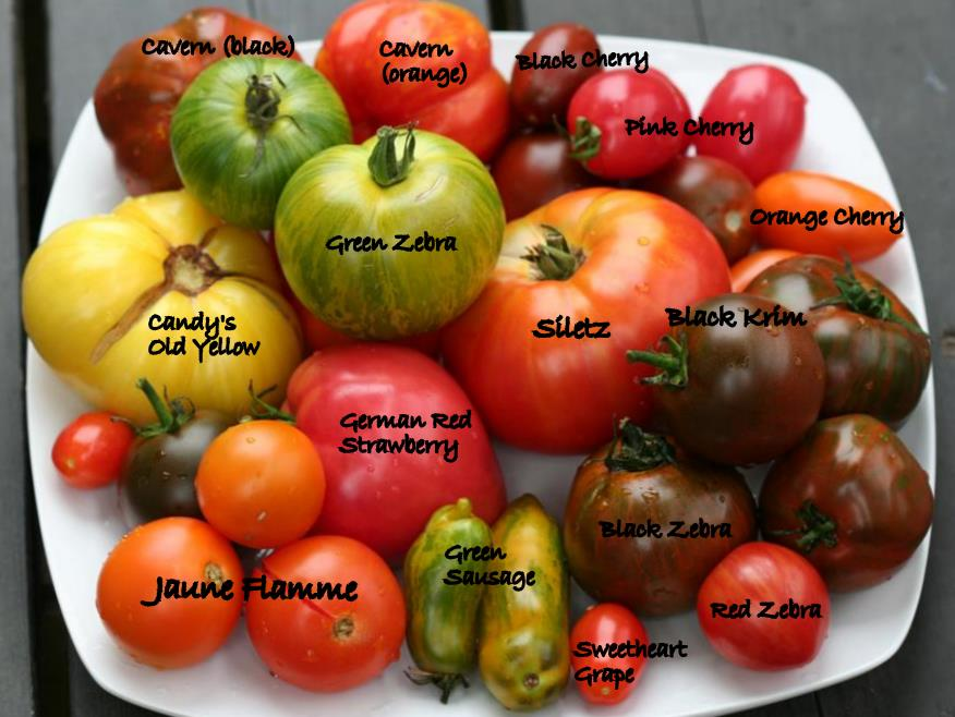 Heirloom Tomatoes From Market With Names