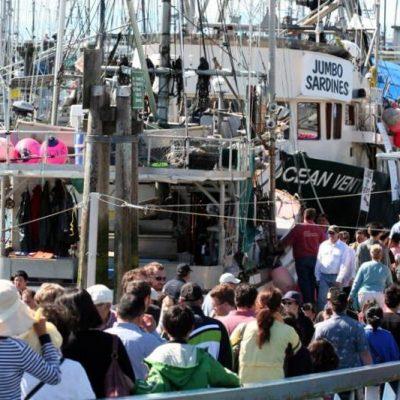 Wild Seafood Festival in Steveston: Sablefish, Sardines and Sockeye