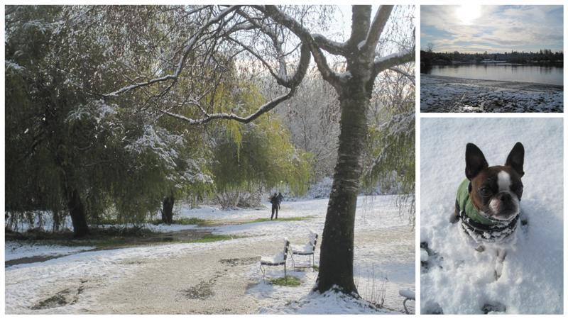 November Snow Day At Trout Lake Medium
