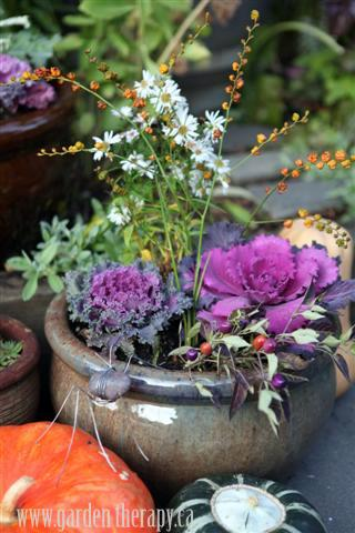 Halloween Planter Kale Crocosmia Asters and Rock Spider