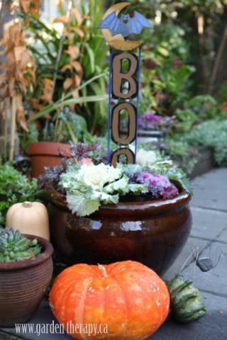 Halloween Planters