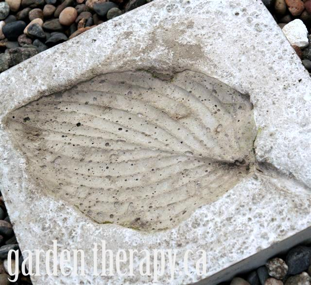 Hosta Imprint Concrete Stepping Stone