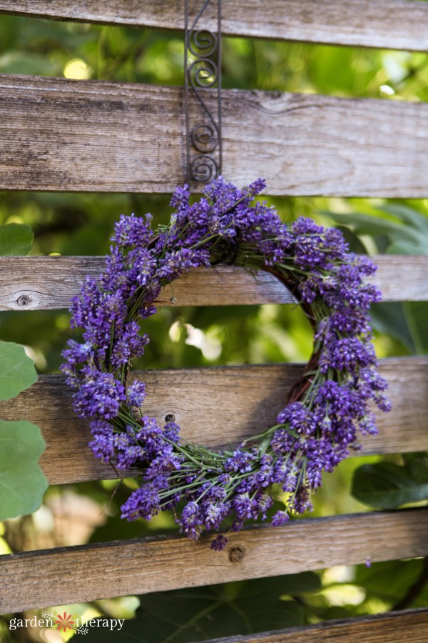 a beautiful DIY lavender wreath