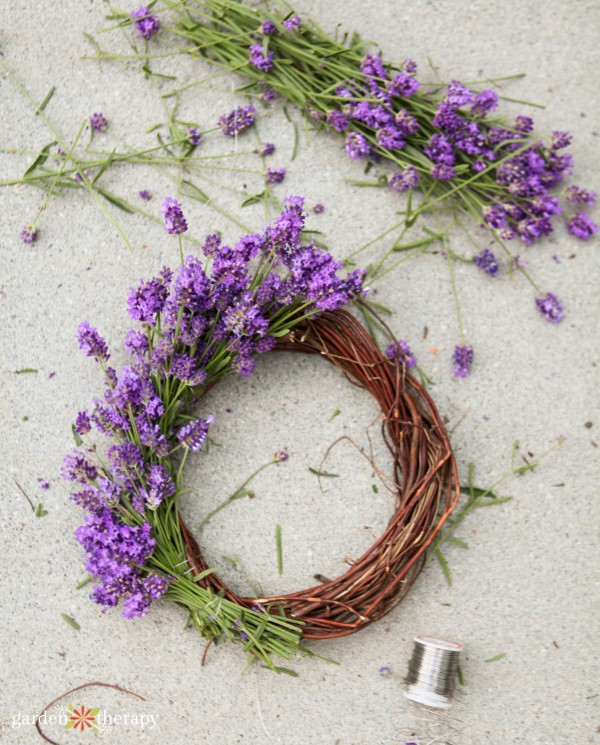 Making a lavender wreath