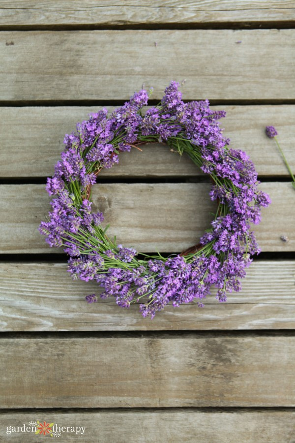 A homemade lavender wreath