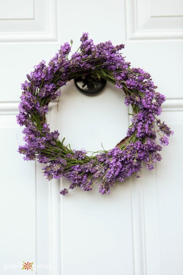 fresh lavender wreath from the garden