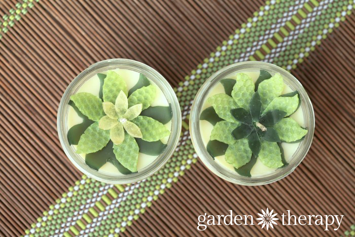 DIY succulent candles project
