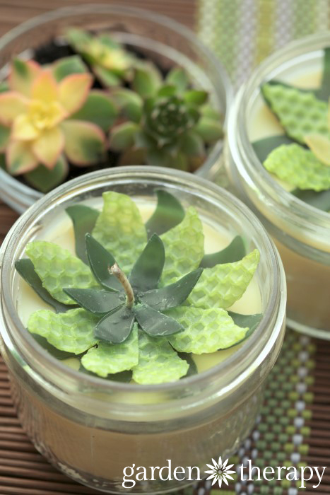 How To Make Soy And Beeswax Candles With Wax Succulents