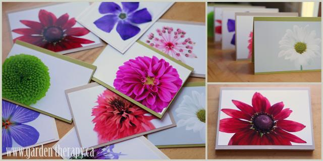 Win A Set Of Studio Blooms Art Cards Contest NEW