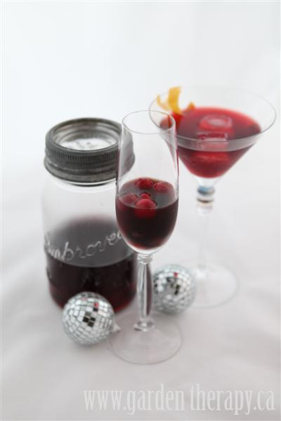 Blueberry raspberry strawberry and blackberry infused vodka and new years eve cocktail recipes