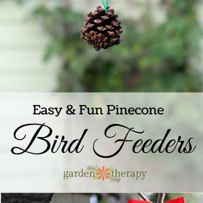 Pinecone Bird Feeders