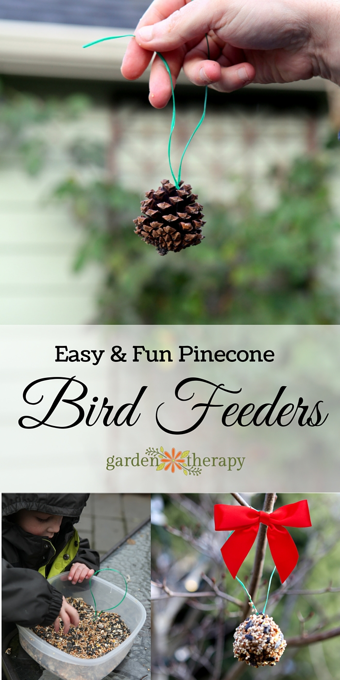 How To Make Pine Cone Bird Feeders