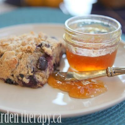 Whole Wheat Blueberry Lemon Scone Recipe