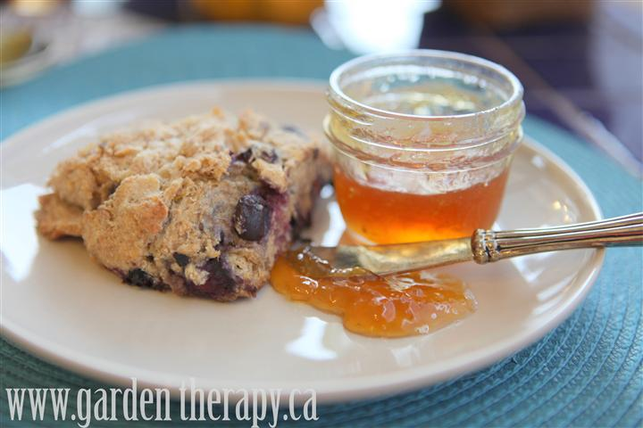 Whole Wheat Blueberry Lemon Scone recipe with meyer lemon jam