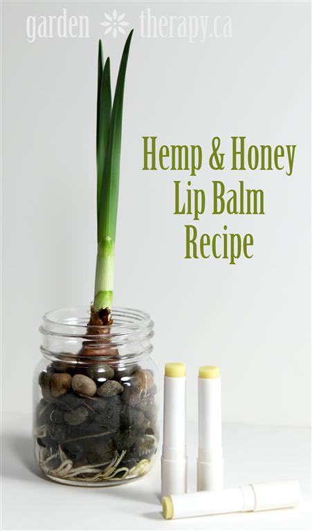 Hemp and Honey Lip Balm Recipe