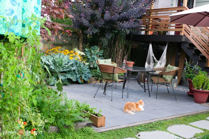 Garden makeover featuring a paved patio with beautiful plants around the boarder and an orange cat napping.