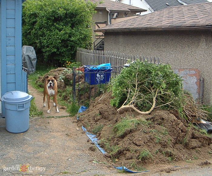 Removing Grass and Soil