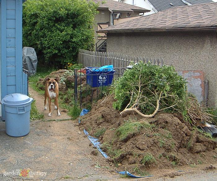 Backyard Patio Project Update My Healing Garden Backyard Remodel Garden Therapy