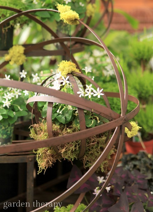 Hanging wire balls with moss and oxalis make a gorgeous spring display