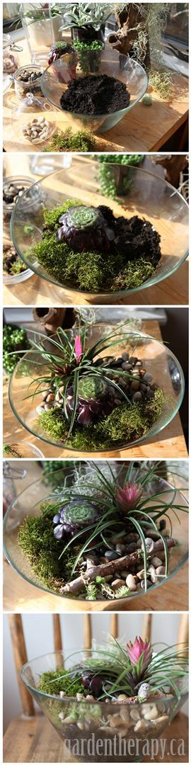 DIY Terrarium Project Using a Salad Bowl - full instructions and a review of the book Terrarium Craft for more ideas