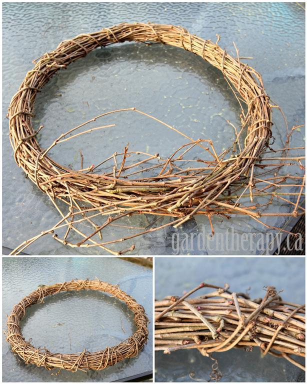 DIY vine wreath from grapevine, virginia creeper, wisteria