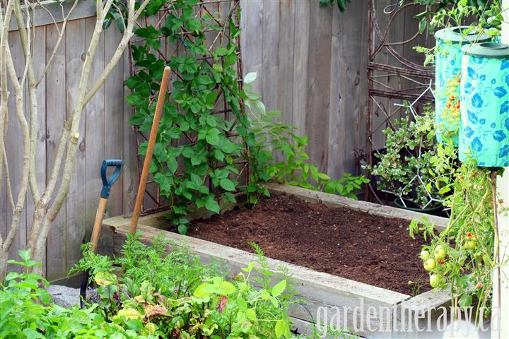Preparing a rasied vegetable garden bed via Garden Therapy