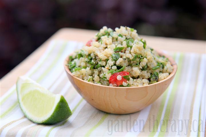 Quinoa Tabbouleh Recipe Via Garden Therapy