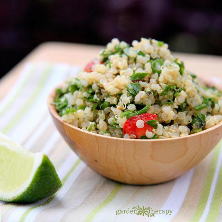 Tabbouleh Recipe from the garden