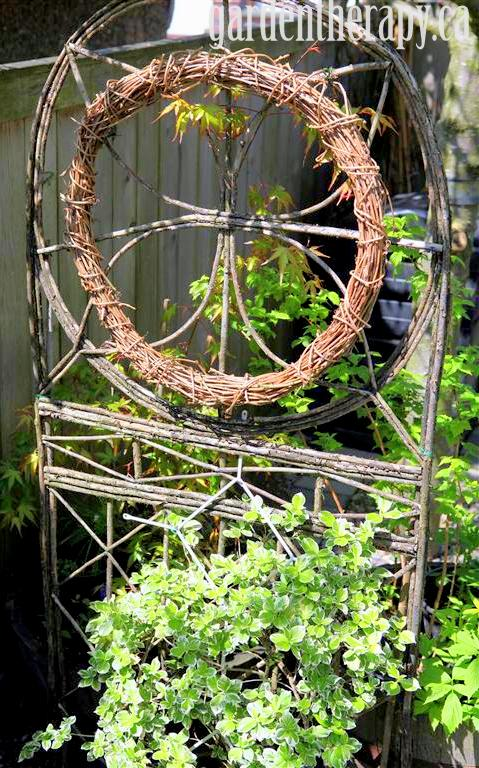 branch trellis with grapevine wreath