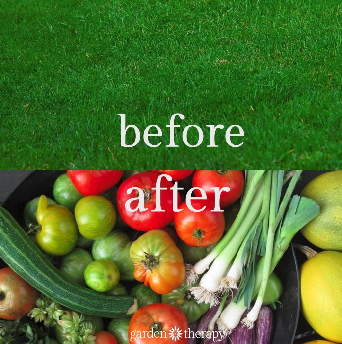 Turn Energy Wasting Lawn Into Nurishing Food Gardens