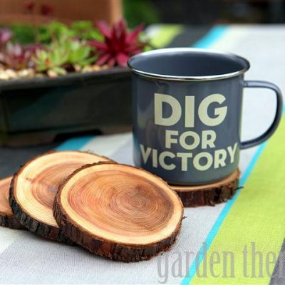 Last Minute Holiday Gifts Countdown Day 4: Branch Coasters