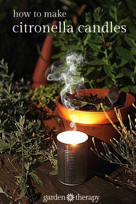 How to make citronella candles from cans and recyled wax