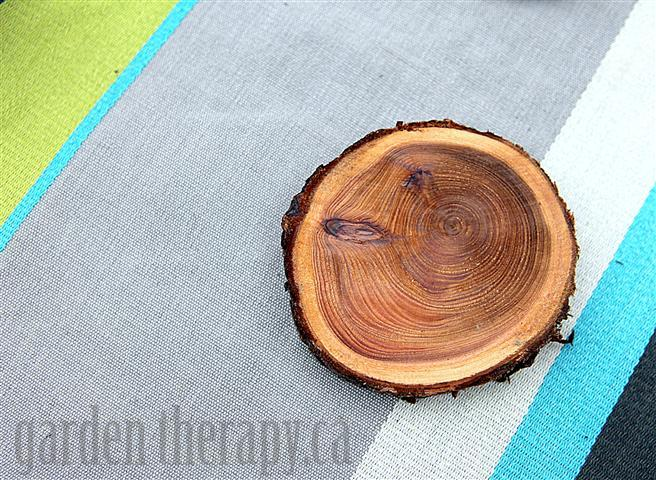 Turning tree branches into coasters DIY project