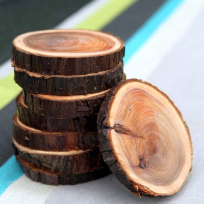 Natural Branch Coasters: How to Cut, Sand, and Seal Wood Slices
