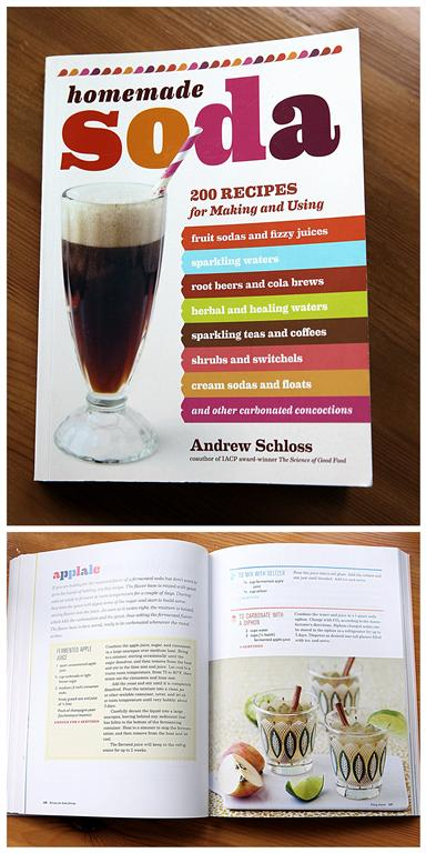 Homemade Soda BooK Review