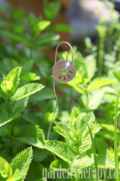 Metal Stamped Plant tag DIY Mint